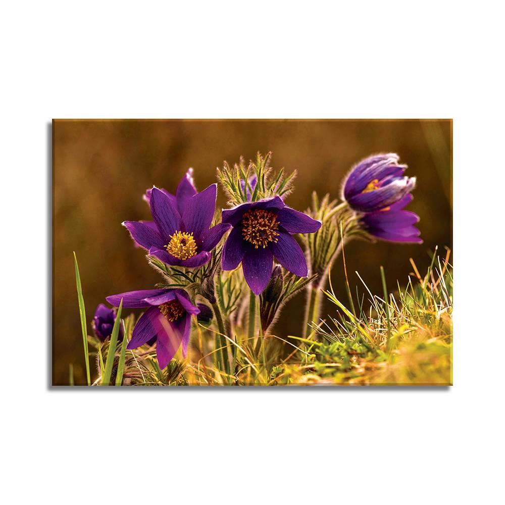 Foto op doek - bloemen - 9F1