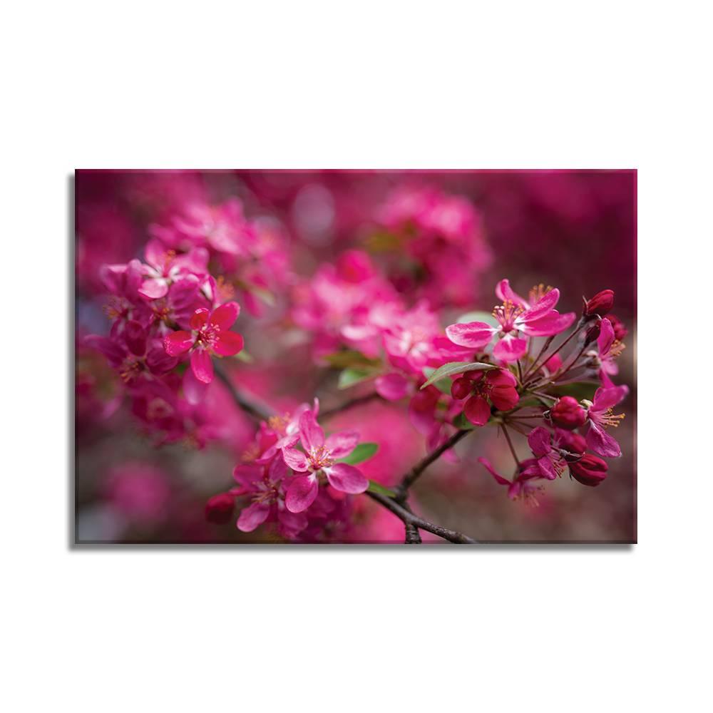 Foto op doek - bloemen - 11F1
