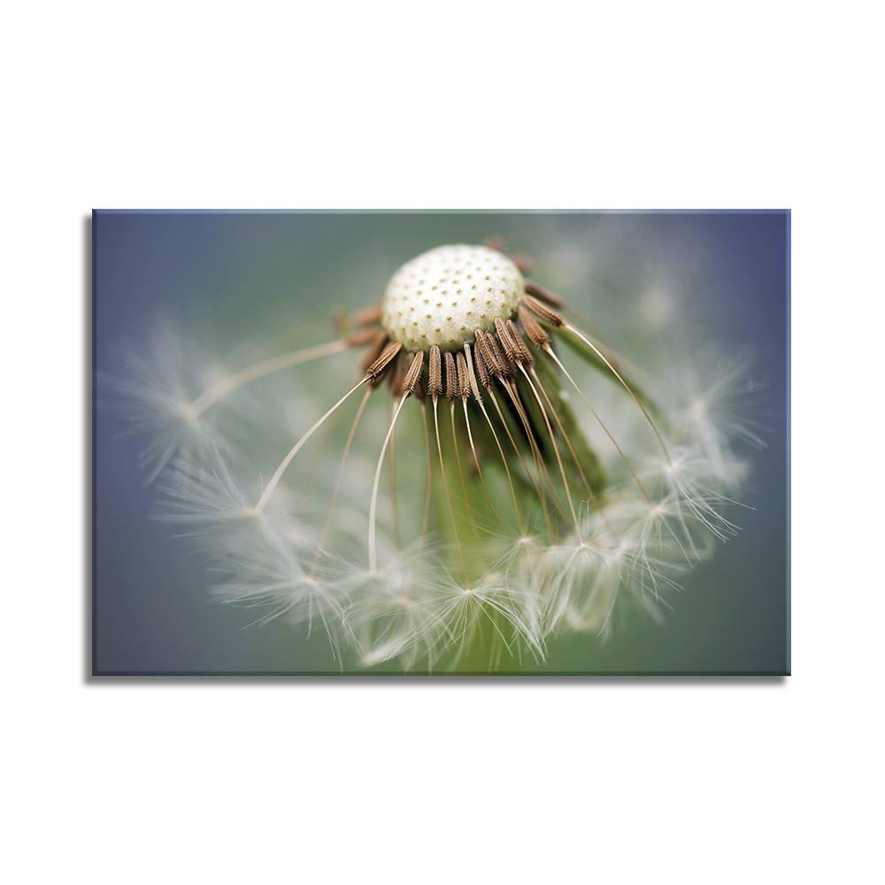 Foto op doek - bloemen - 12F1