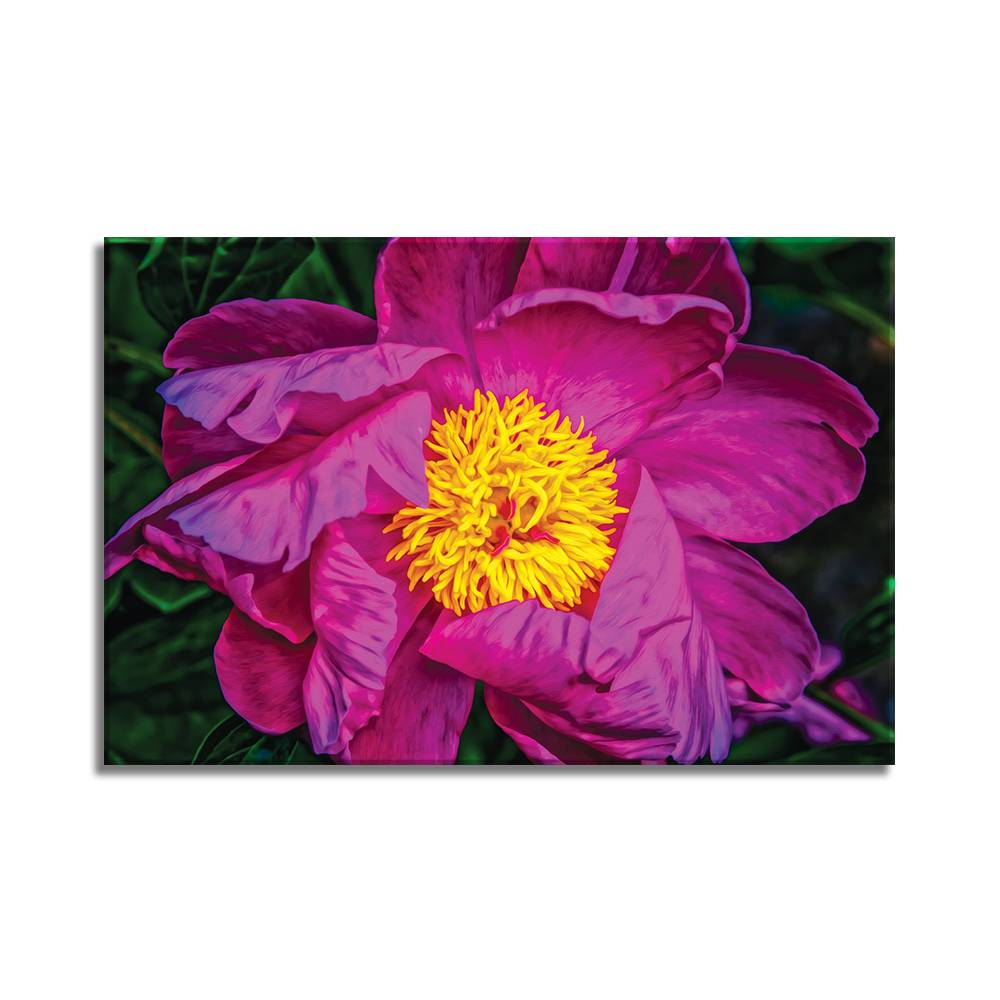 Foto op doek - bloemen - 13F1