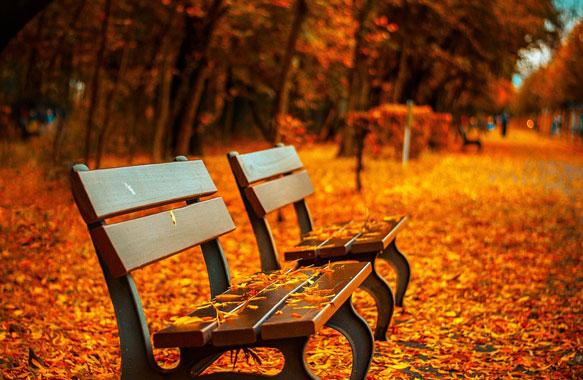 Haal herfst in huis