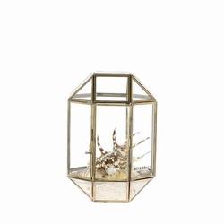 Terrarium Box Belton Goud - 20x20xH27 cm