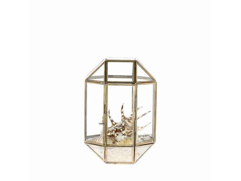 Riverdale Terrarium Box Belton Goud - 20x20xH27 cm