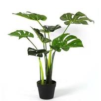 Monstera Plant Groen - Ø50xH70 cm