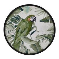 Wanddecoratie Papegaai - Ø60 cm