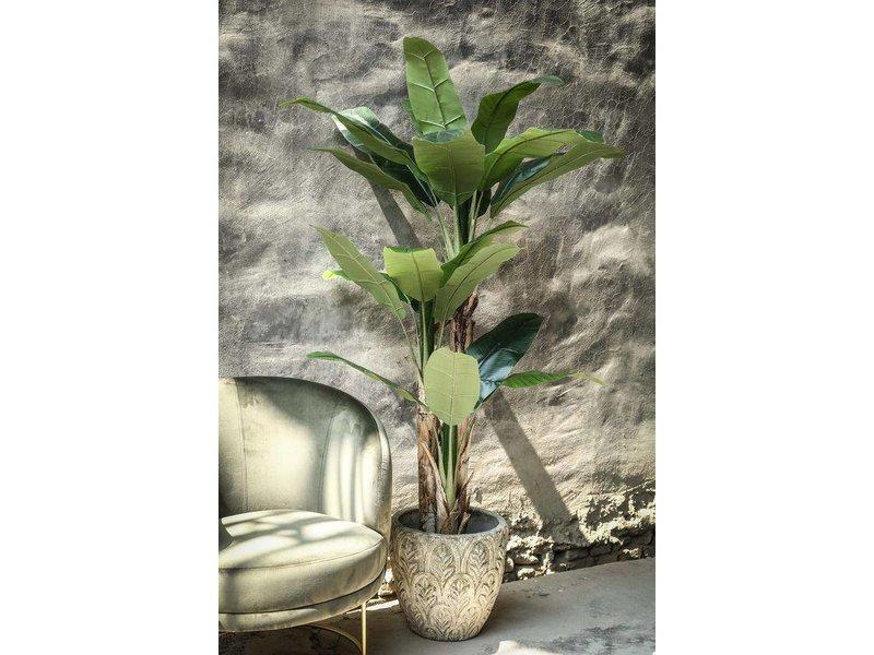 PTMD Collection Bananenboom Kunst - Ø35xH110 cm