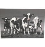 Sweet Living Schilderij Vrolijke Koeien Planken - 60xH40 cm
