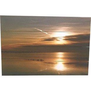 Schilderij Sintsje Planken - 60xH40 cm