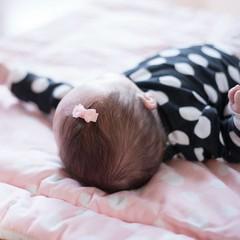 Your Little Miss Horquillas para bebé con lazo negro
