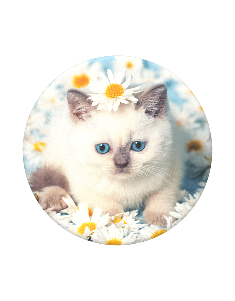 PopSockets PopSockets PopTops Swappable Device Stand and Grip Topper - Purr-fect Flower