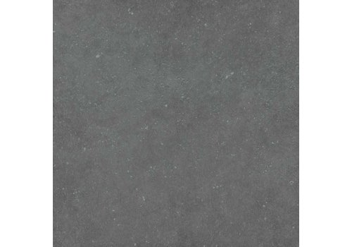 Vloertegel: Pastorelli Loft Antracite 60x60cm