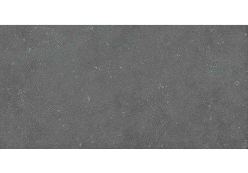 Vloertegel: Pastorelli Loft Grijs 30x60cm