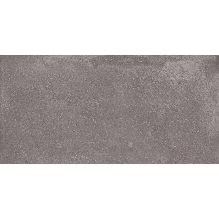 Vloertegel: Aleluia Avenue Anthracite 30x60cm