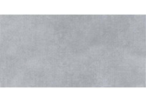 Vloertegel: Pamesa Style Ceniza 30,3x61,3cm