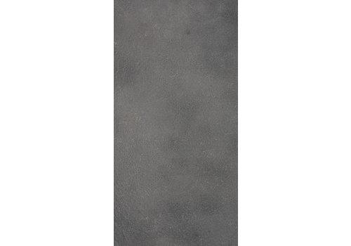 Vloertegel: Eiffelgres Argent Grijs 30x60cm