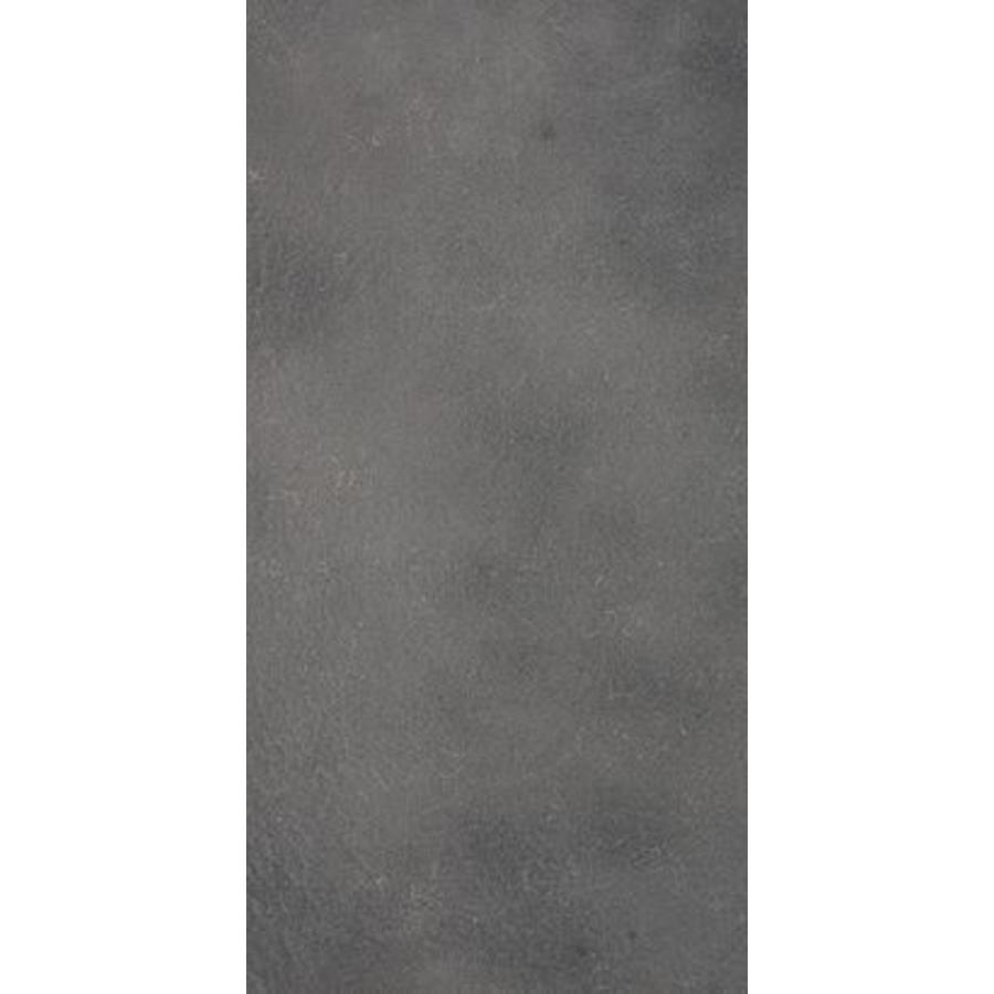 Vloertegel: Eiffelgres Argent Argent 30x60cm