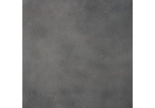 Vloertegel: Eiffelgres Argent Argent 60x60cm