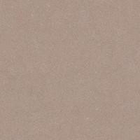 Vloertegel: Carofrance Performance Brun 45x45cm