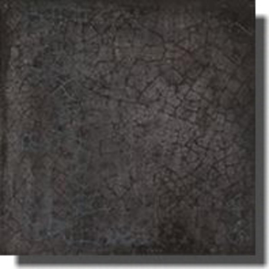 Wandtegel: Iris Maiolica Nero 20x20cm