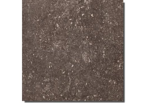 Vloertegel: Rex Pietra del Nord Fango 60x60cm