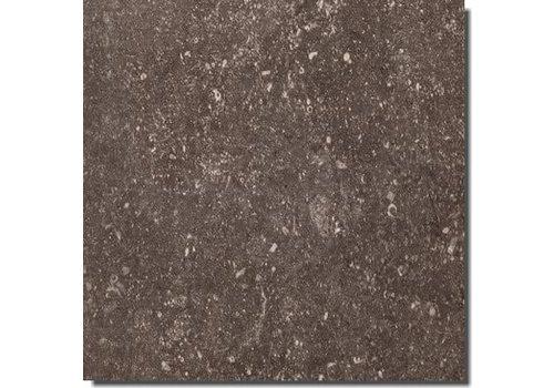 Vloertegel: Rex Pietra del Nord Grijs 60x60cm