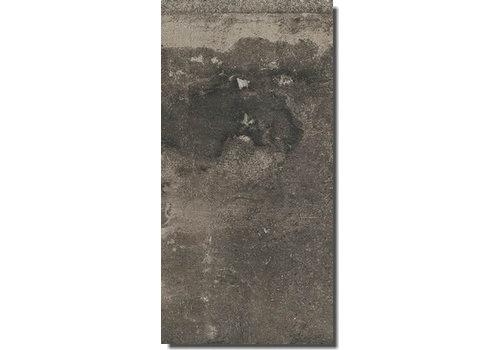 Vloertegel: Rex La Roche Grijs 40x80cm