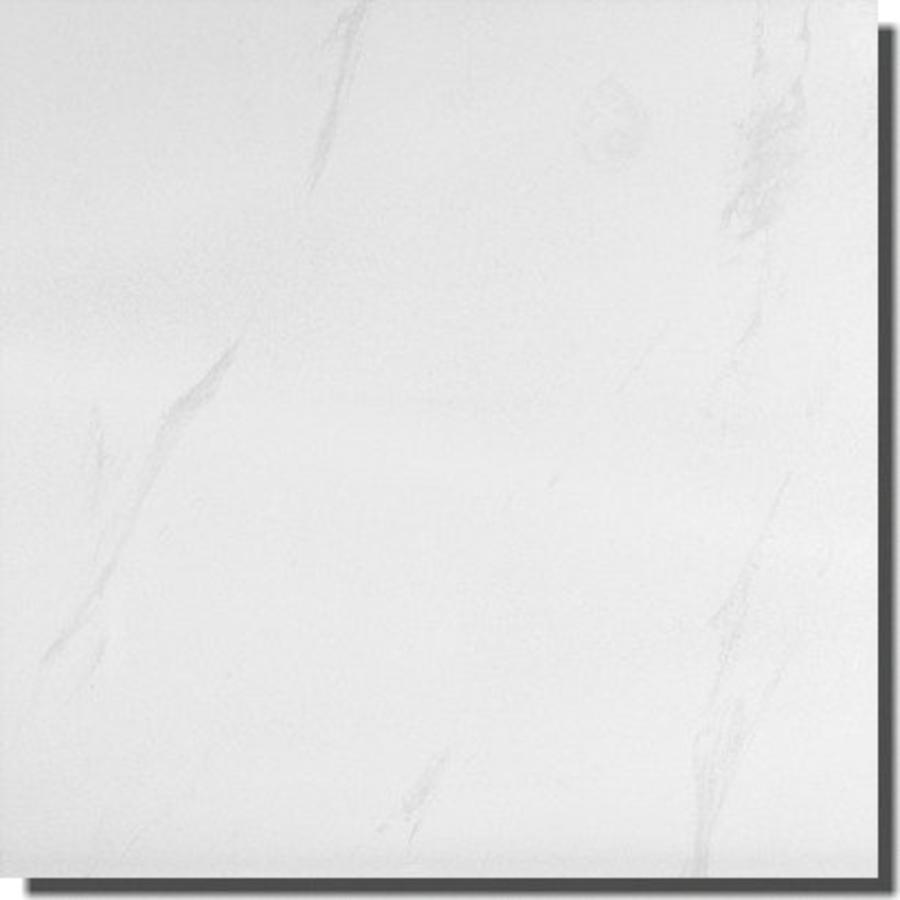 Vloertegel: Steuler Marble Poliert 73x73cm