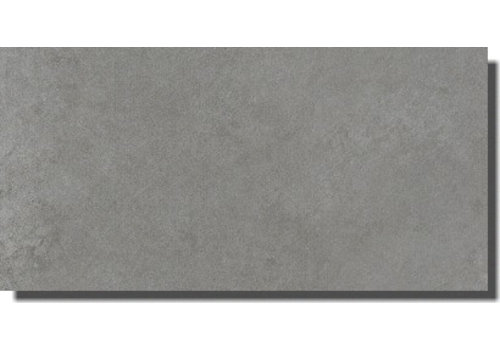Vloertegel: Grohn Lilu Grijs 30x60cm