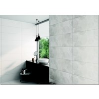 Wandtegel: Steuler Pure White Weiss 25x70cm