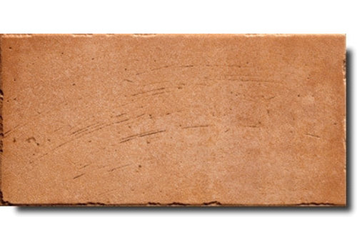 Vloertegel: Serenissima Quintana Bruin 31,7x48cm