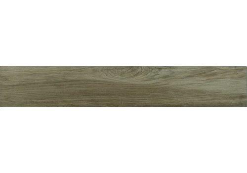 Houtlook: Ragno Woodplace Bruin 20x120cm