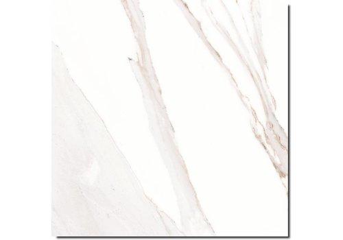 Caesar Anima ACMR 60x60 vt calacatta oro lucidato