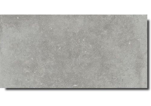Vloertegels: Flaviker Nordik Stone Ash 60x120cm