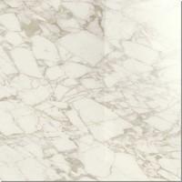 Ragno Maiora Marble glossy 120x120 Rectificato R6RX Arabecato