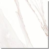 Caesar Anima AEMR 60x60 vt calacatta oro nat rett