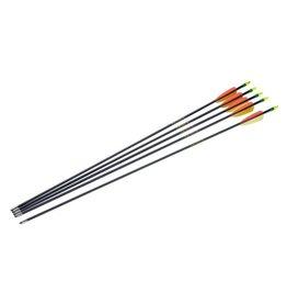 "Armex Fiberglass arrow 30"" - 5 pc"
