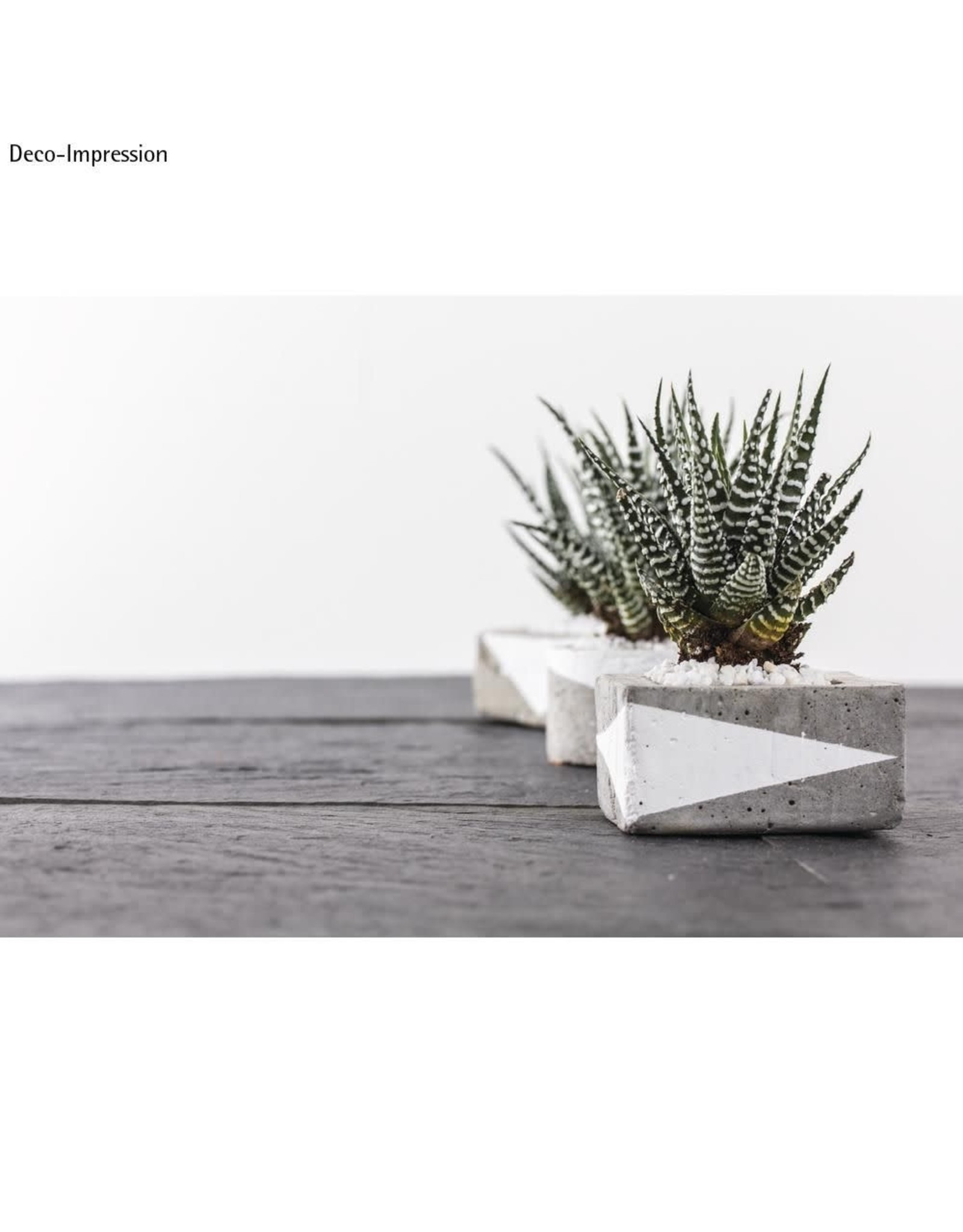 Rayher Creatief beton 2,5kg