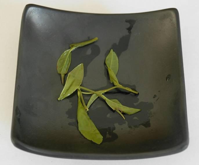Grüner Tee Anji Bai Exclusive-4