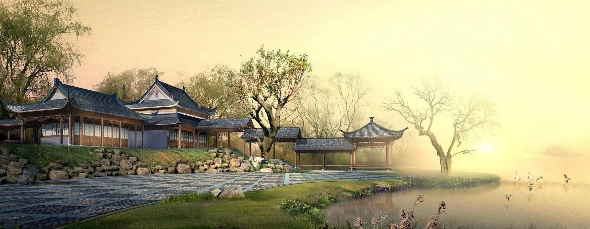 Thé oolong - Thé Wulong