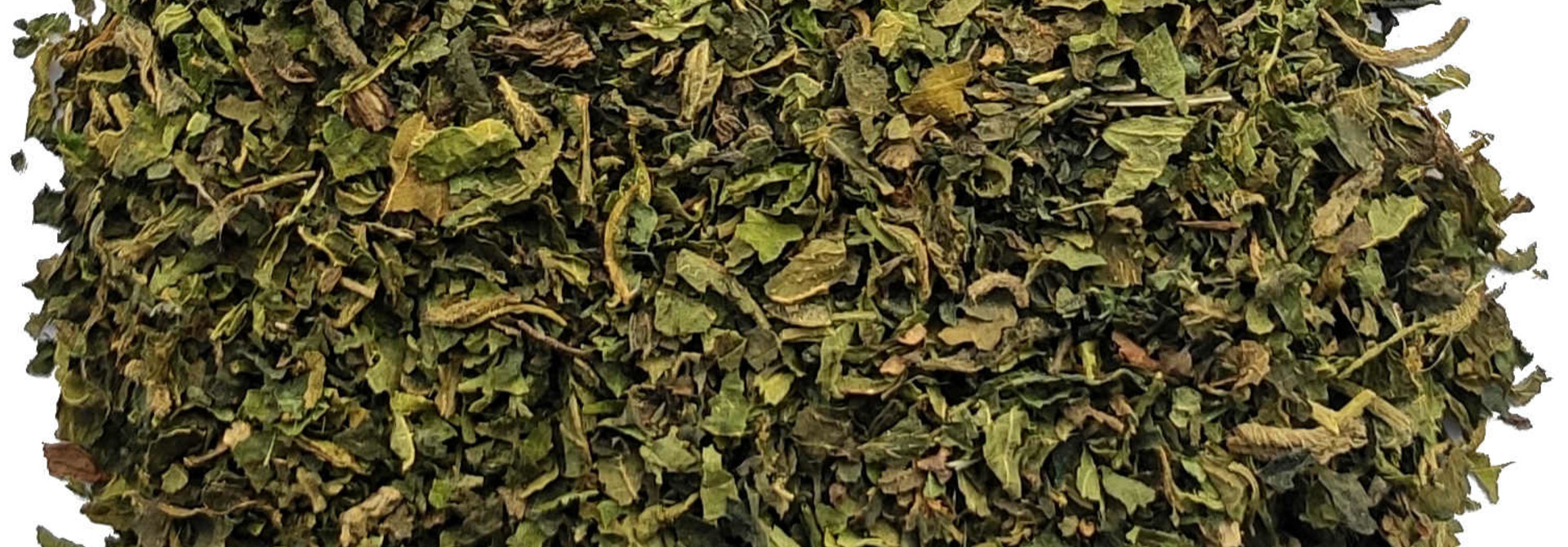 Tisane: Feuille d'ortie