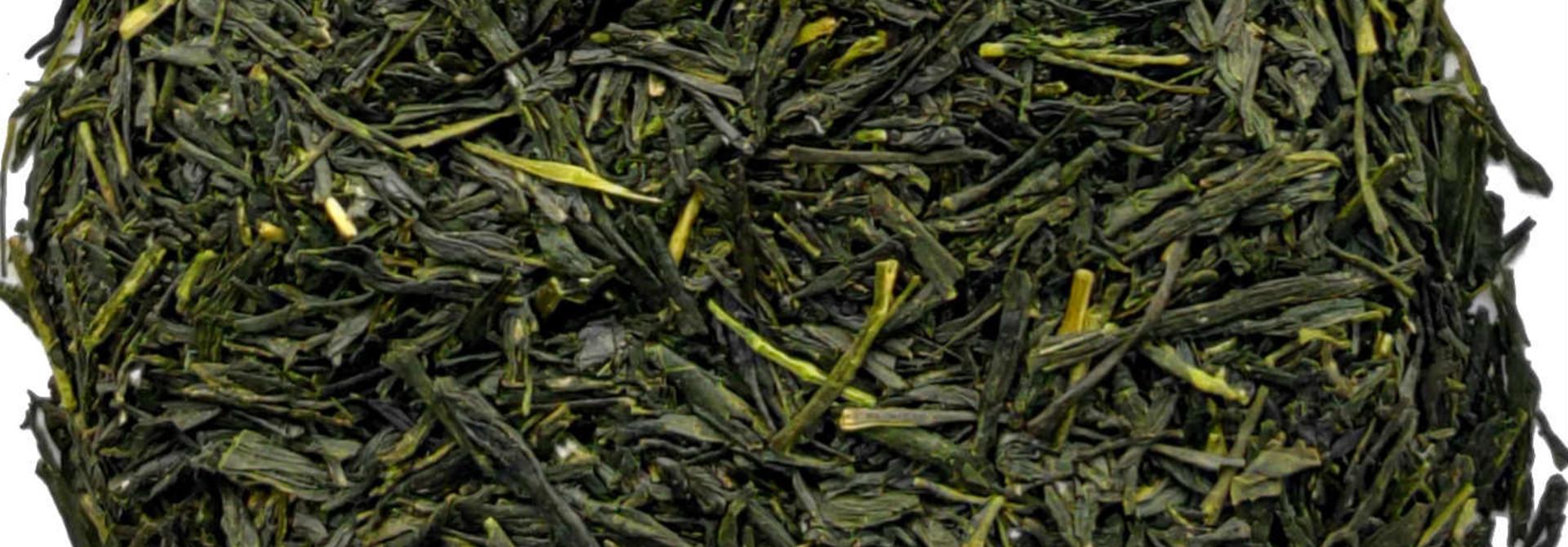 Grüner Tee Gyokuro Kusanagi Kagoshima BIO