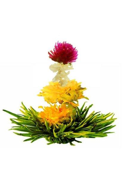 8 Fleurs de Thé Spring Melody