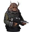 Star Wars Rogue One Bust 1/6 Bistan