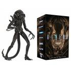 Aliens Action Figure 23 cm Ultimate Warrior (Brown)