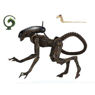 NECA  Alien 3 Action Figure Ultimate Dog Alien 23 cm