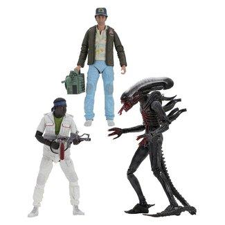 NECA  Alien Action Figure 18 cm 40th Anniversary Series 2 (3)