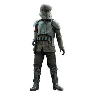 Hot Toys Star Wars The Mandalorian Action Figure 1/6 Transport Trooper 31 cm