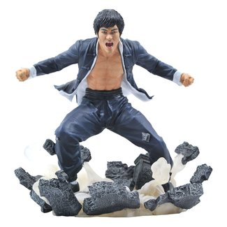 Diamond Select Toys Bruce Lee Gallery PVC Statue Earth 23 cm