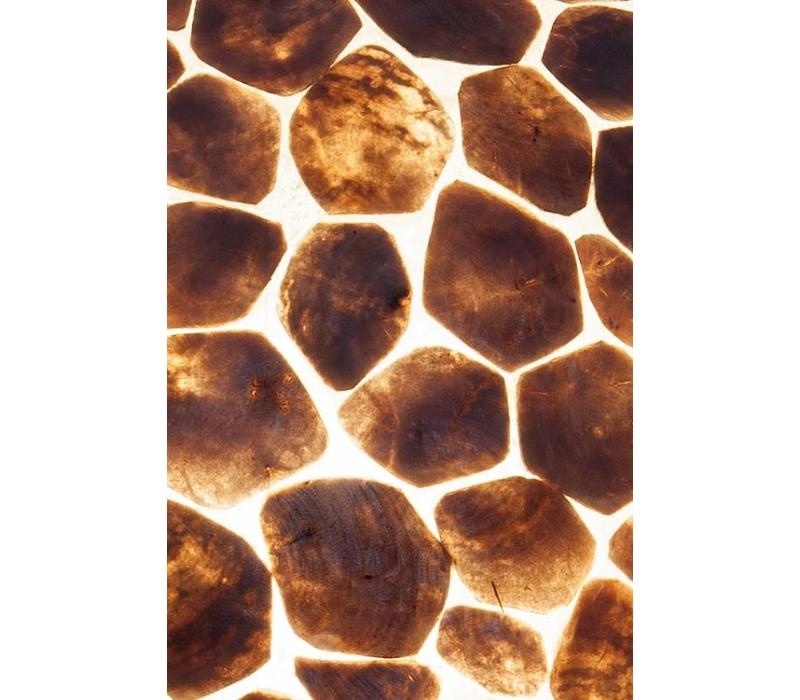 Tafellamp schelp Turtle bol 40 cm