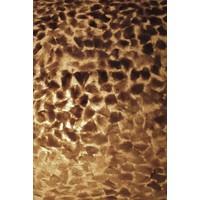 Vloerlamp schelp Wangi Gold Apollo 150 cm
